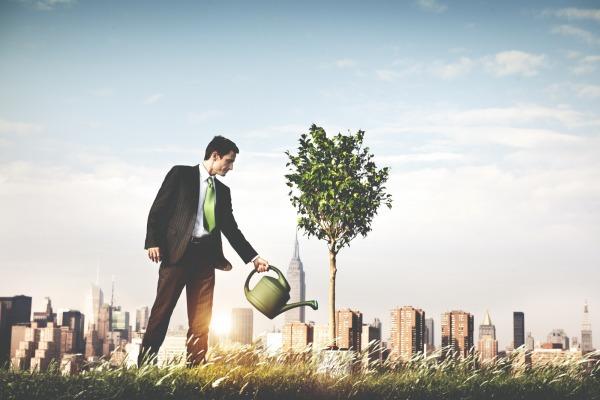 Un comité social et économique, et bientôt environnemental ?